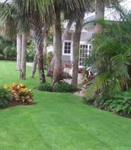Home Flc Landscape